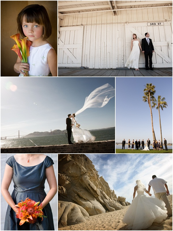 WedSpring Collage
