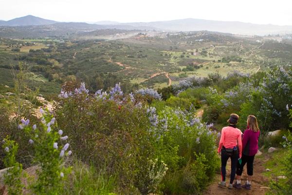 Rancho La Puerto 8