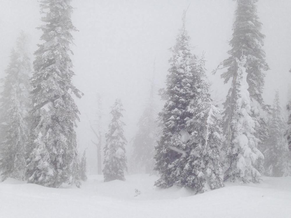 Snow City-4.jpg