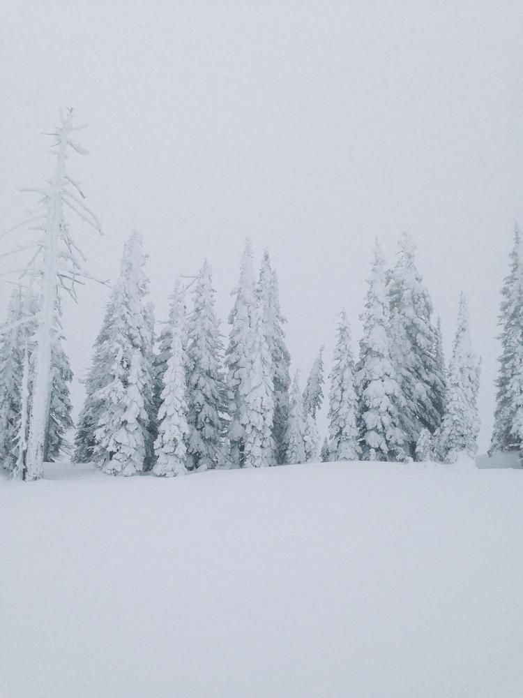 Snow City-7.jpg