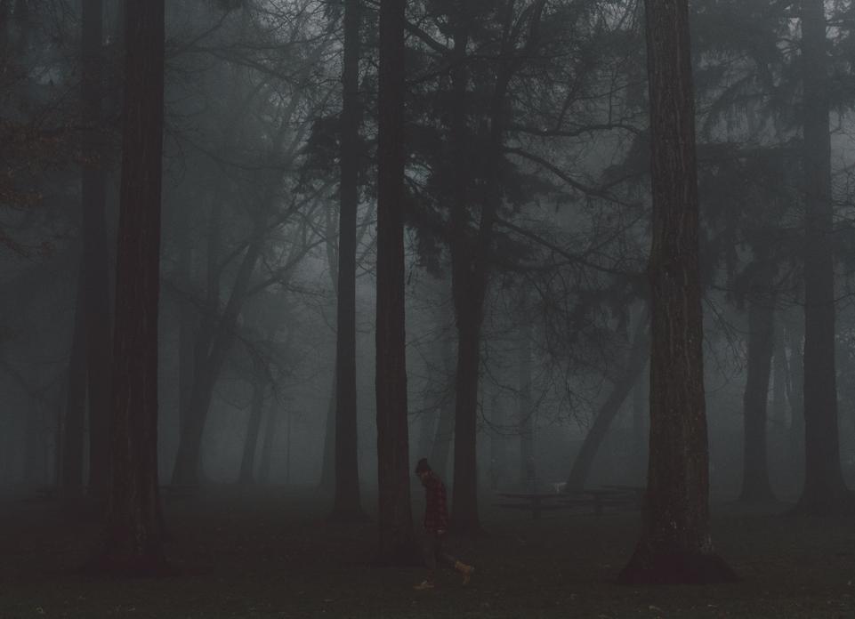 Cam Fog-10.jpg