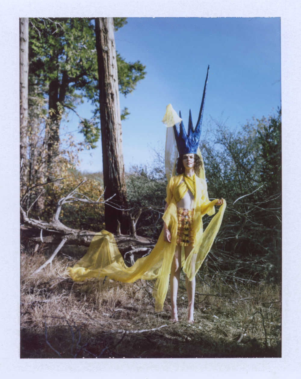 LOG YELLOW POLAROIDS-4.jpg