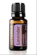 Lavender - $28