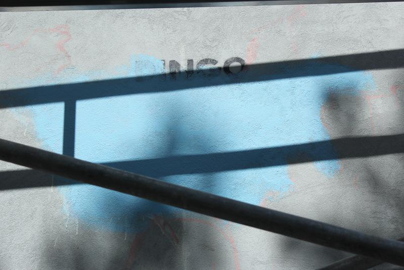 dingo @ muros-003.JPG