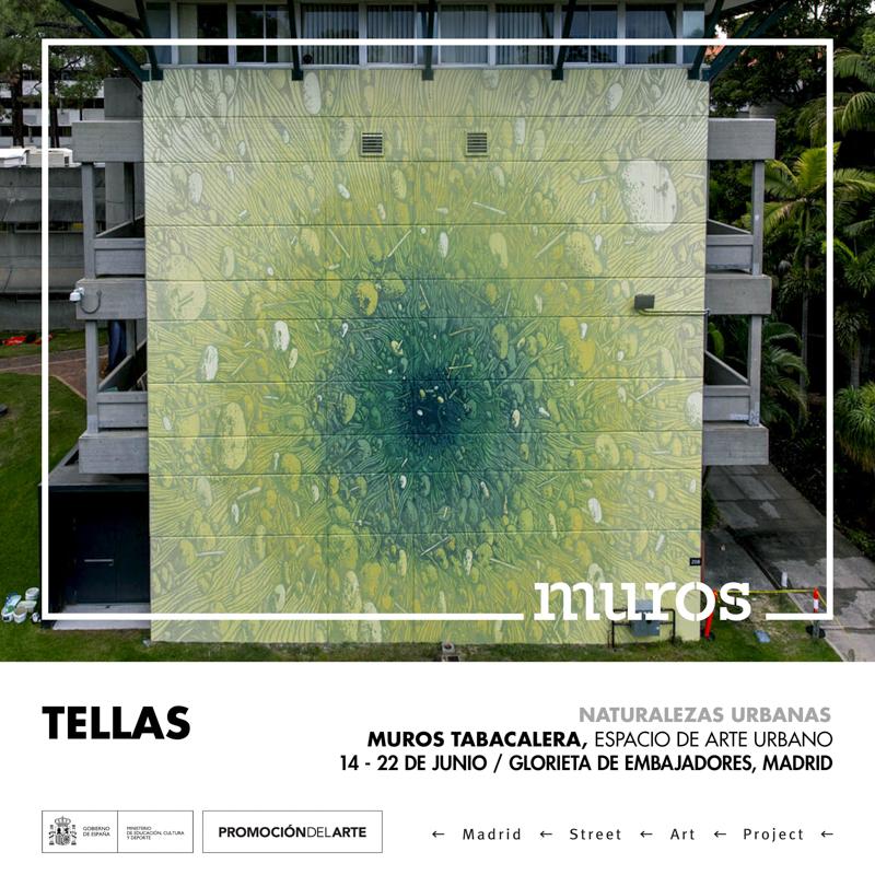 MUROS ARTISTAS.jpg