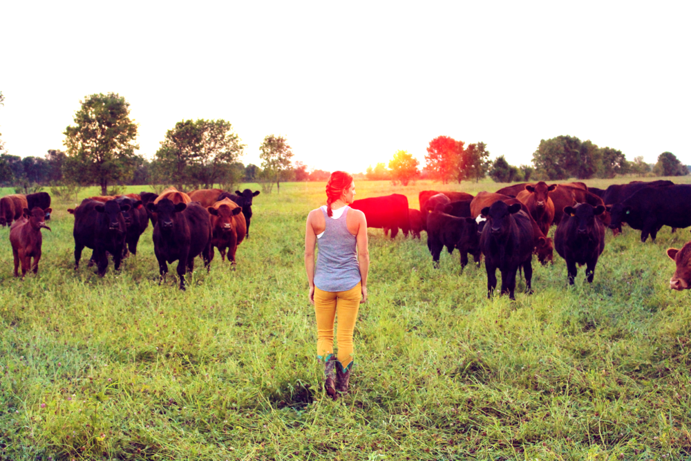 leanna& cows.png