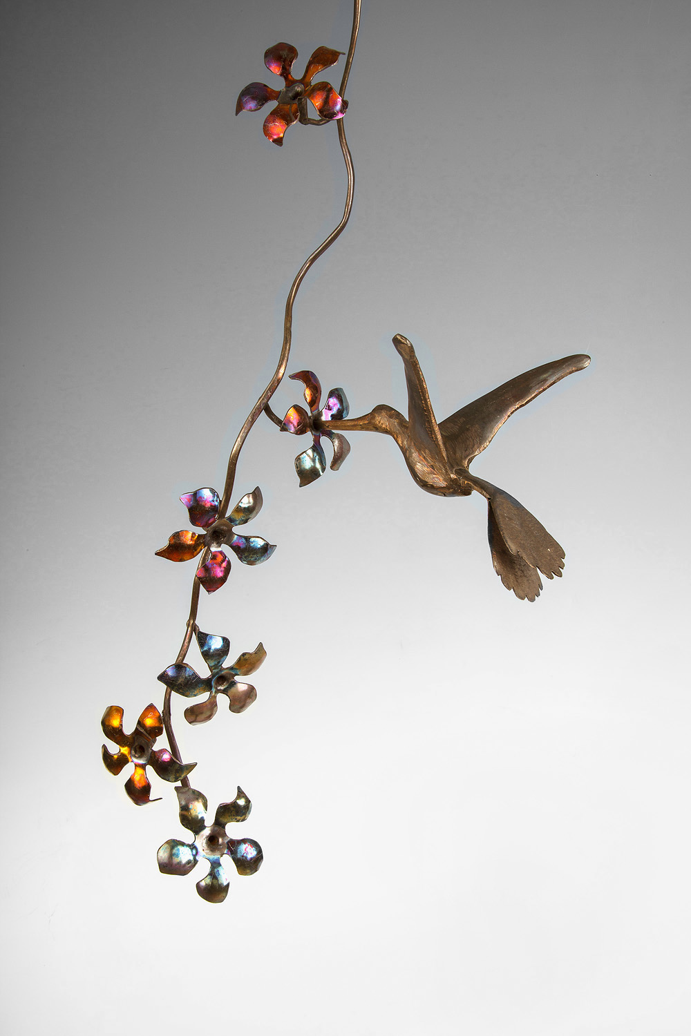shane schaeffer's metalwork hummingbird & flowers professionally photographed by john higby of eugene oregon