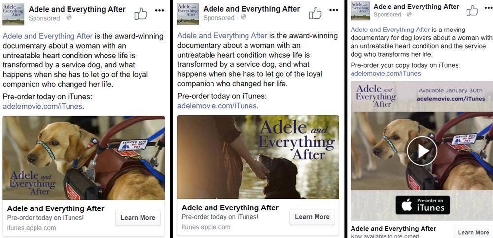 ADELE - FB ad - Case study.jpg