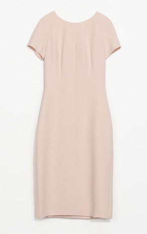 Zara Shift Dress $79.90