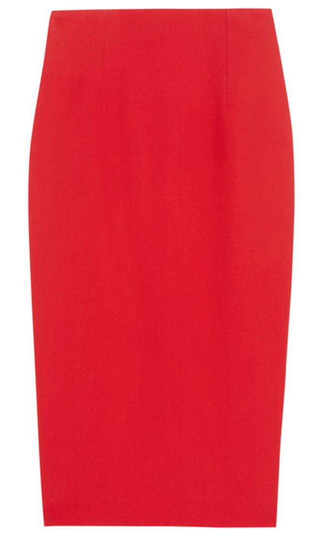 Alexander McQueen Skirt $630