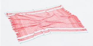 Zara Double Fringe Jacquard Scarf $49.90