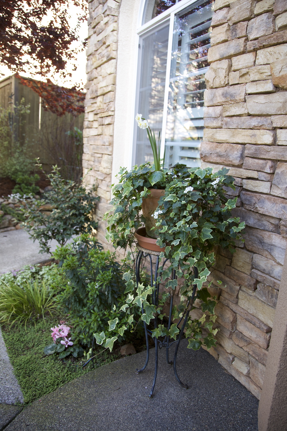 Inviting potted entry plants.