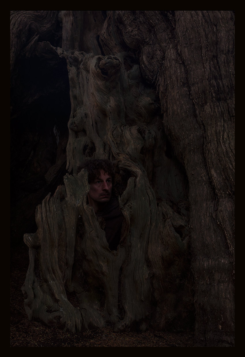 Self Portrait within Yew, May 30th 2015