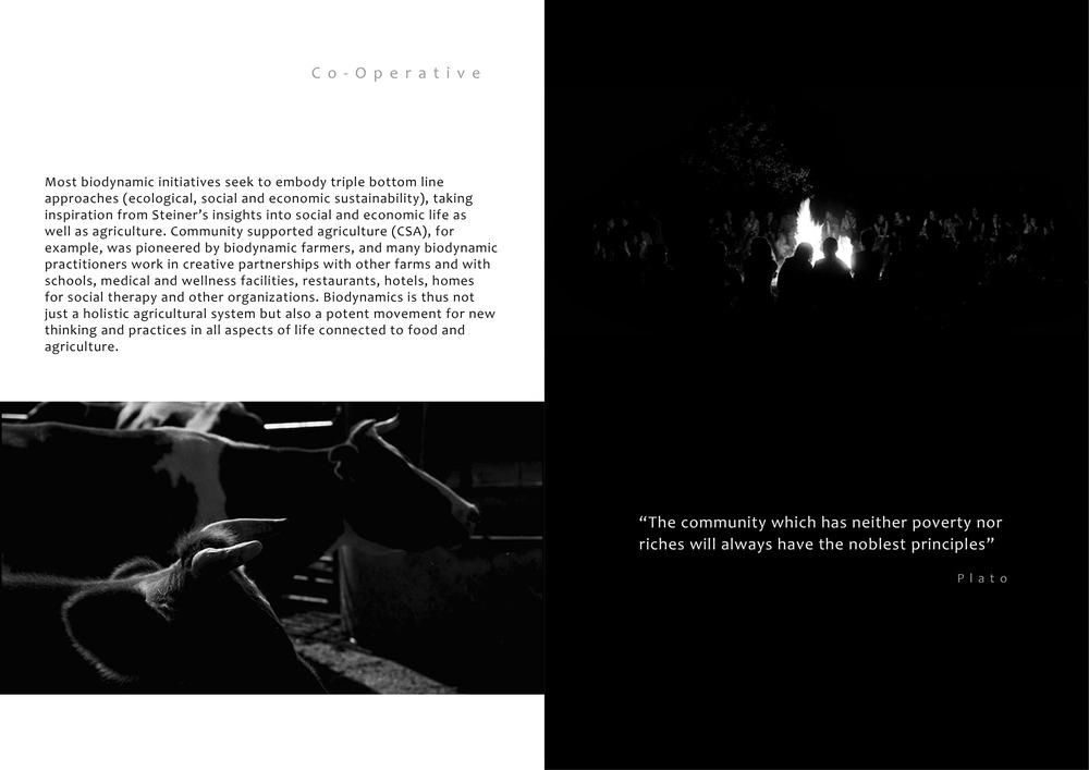 BrochureDraft1B&WAlt3.jpg