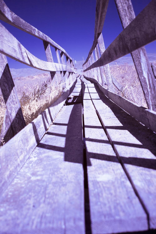 drawbridge_MG_6452.jpg