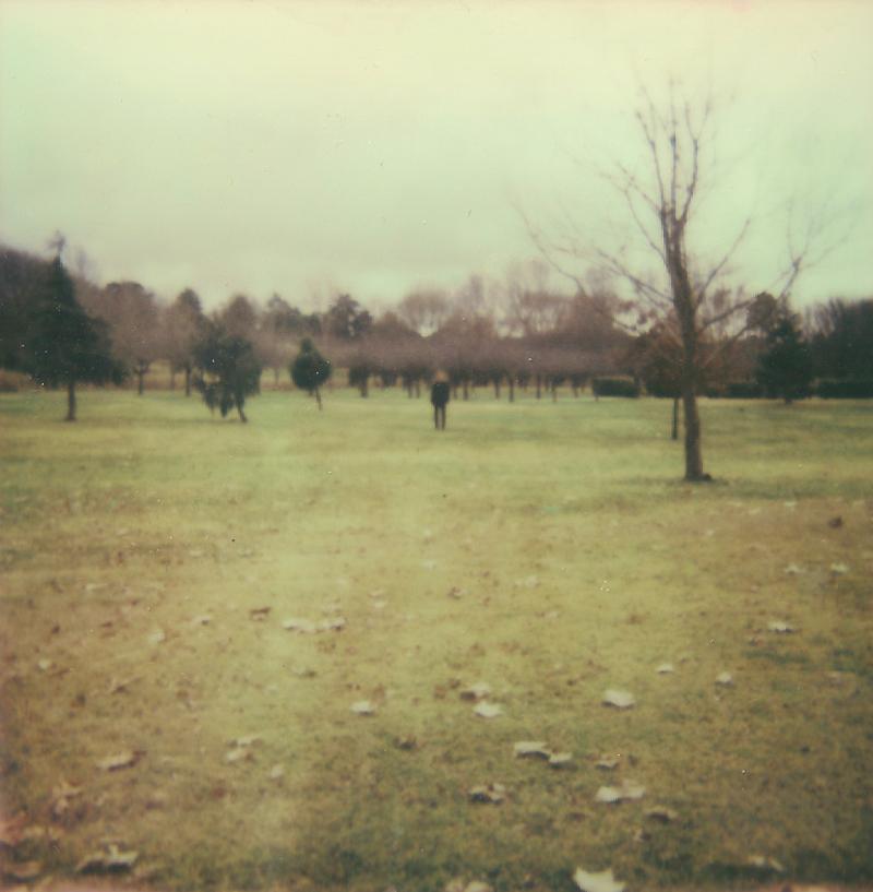goose park