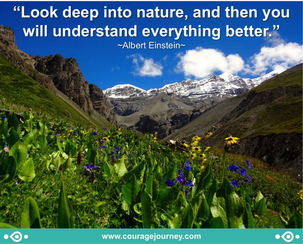 Einstein on nature