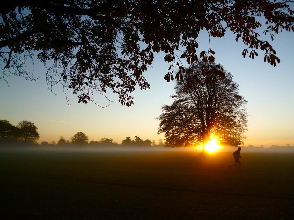 runner at sunrise, January 2012