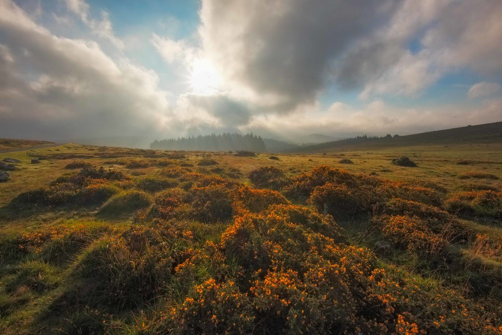Mist and light across Dartmoor. Fujifilm X-T1 + 10-24mm @ 10mm. f/18. 1/320.