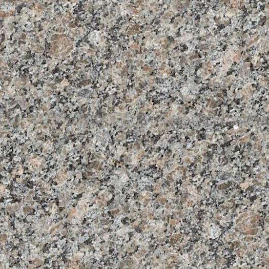 Caledonia Granite Swatch - Photo.jpg