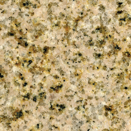 Wheatfield Granite Swatch - Photo.jpg