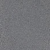 SilverVein.jpg