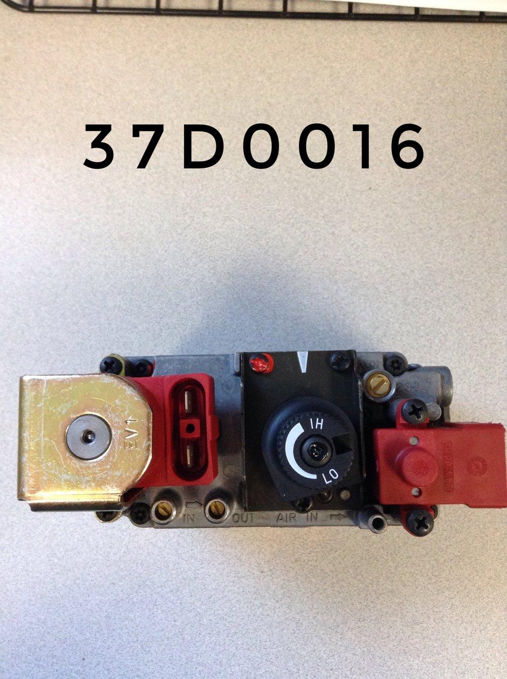 37D0016 (1).JPG