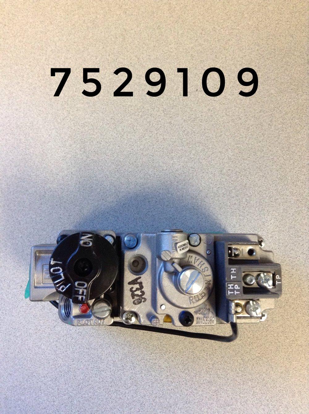 7529109 (1).JPG