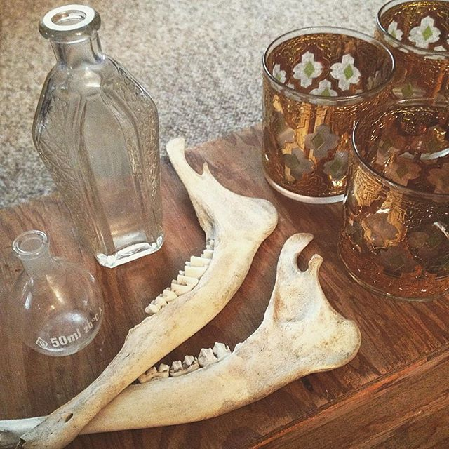 Details ✨ #vintage #oddities #curiosities #bones #glassware #homedecor #fleamarket #grandrapids #michigan