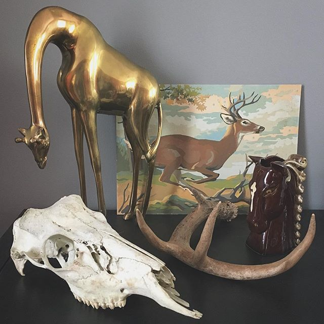 More treasures I've been collecting for the @vintagestreetmarket. We will be set-up at all 5 dates again! ✨ #vintage #midcentury #oddities #kitsch #brass #skull #antlers #planter #deer #paintbynumber #homedecor #fleamarket #grandrapids #michigan