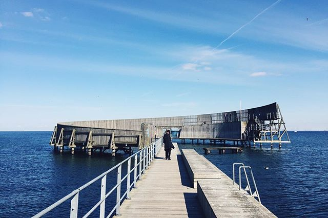 Soaked up the sunshine on the coolest swimming pier in Copenhagen - complete with watching a number of brave souls go for a (clothing optional) polar swim in 1 degree North Sea water.