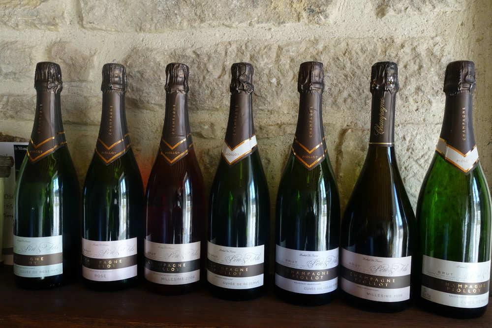 bottles piollot.jpg