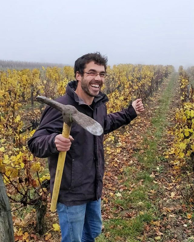 Spent a foggy but fun Friday afternoon exploring Touraine terroir with Simon Tardieux from Courtault-Tardieux! Each cuvée of Sauvignon blanc (Les Sagères, Avec Vue sur le Cher, and Les Maselles) has different soil from the others, making each one unique