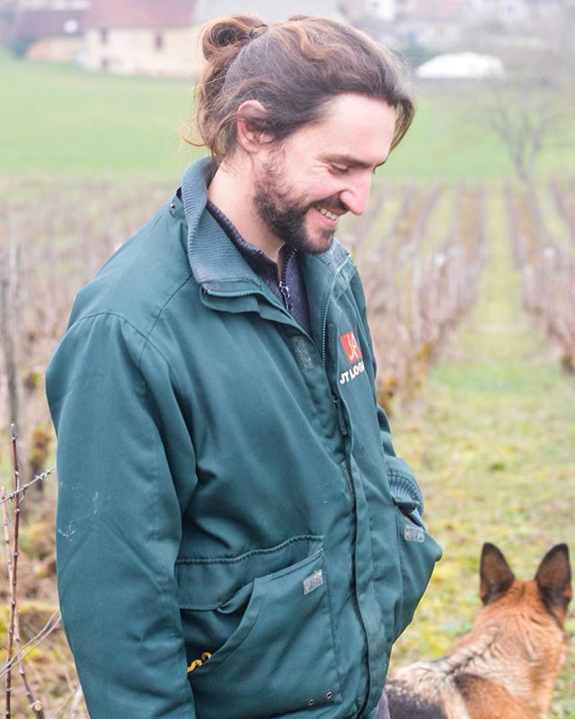 In December, Nicolas Jacob acquired 4 hectares of vines in the Côtes du Jura, significantly adding on to his singular hectare in L'Étoile. He's starting to experiment with new blends and even with vignes sauvages. With only a few barrels of each of his 4 cuvées (Là-Haut, Là-Bas, Aux Perrières Savagnin, and Aux Perrières Pinot Noir) produced in 2017 and 2018, we're really excited about what's to come in the future. Check out the full story on Nicolas on our website (fresh off the presses today)!