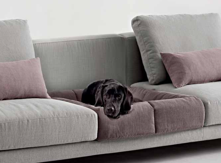 Interiors Advent Calendar - Dema Firenze Dude sofa dog bed | Masha Shapiro Agency.png