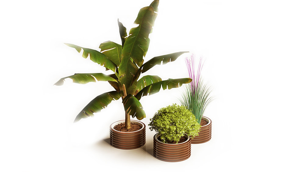 Seora - Osianna Planter - Masha Shapiro Agency UK.jpg