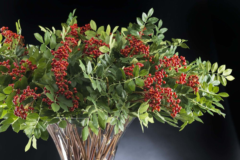 Interiors Advent Calendar - Artificial flowers and flower arrangments by VG New Trend via Masha Shapiro Agency UK.jpg