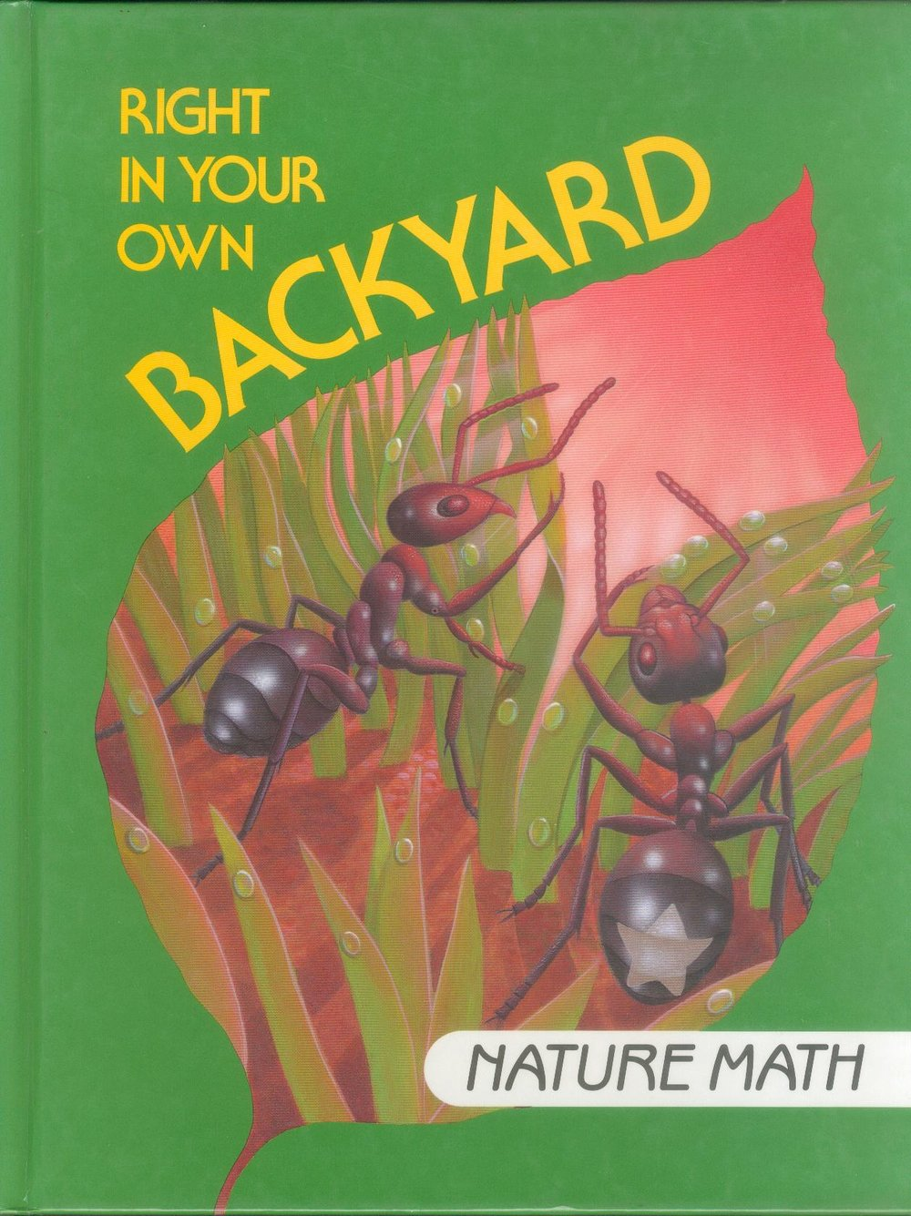 NatureMath.jpg