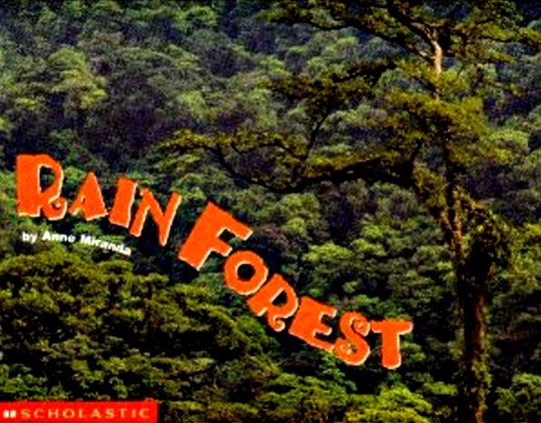 Rain Forest - Copy.jpg