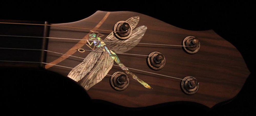 dragonflyPH.jpg