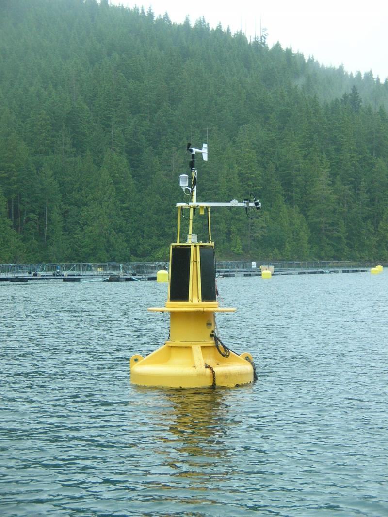 Steves buoy 2.JPG