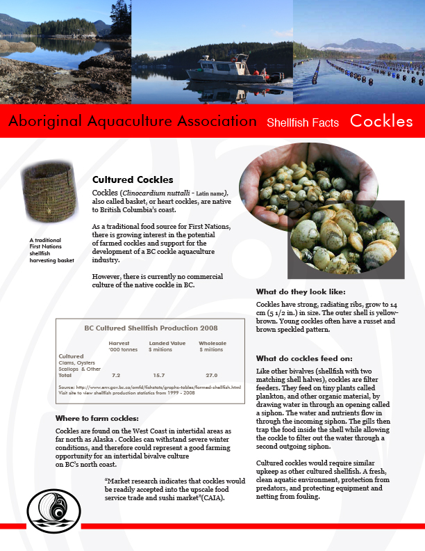 AAA Cockles Fact Sheet Final - pg1.jpg