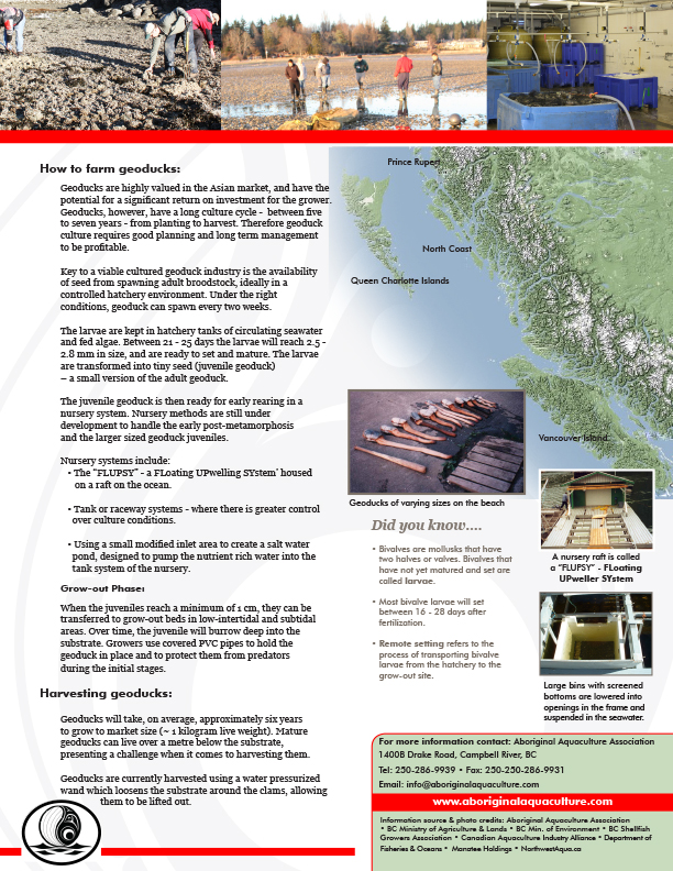 AAA Geoducks Fact Sheet Final - pg2.jpg
