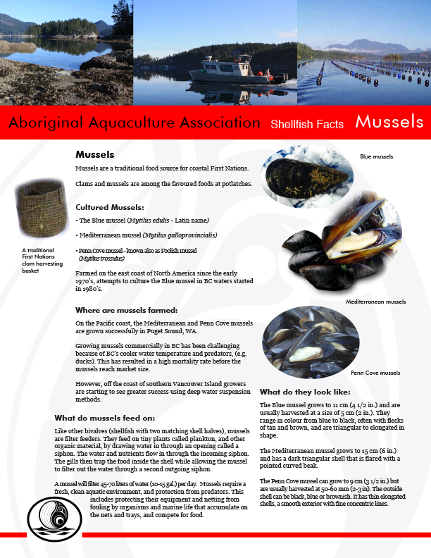 AAA Mussels Fact Sheet Final - pg1.jpg