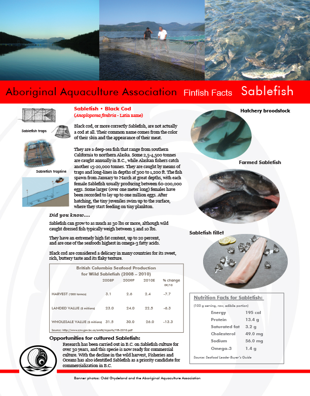 AAA Sablefish Fact Sheet Final - pg1.jpg
