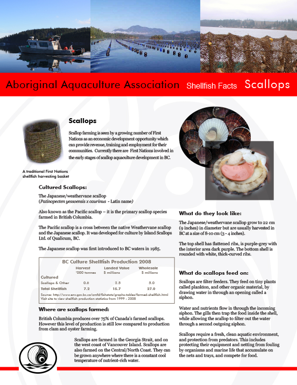 AAA Scallop Fact Sheet Final - pg1.jpg