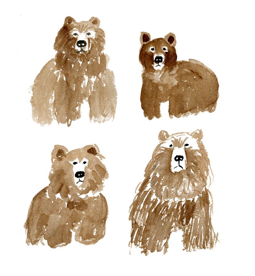 bear brigade.jpg