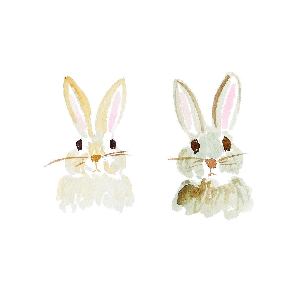 rabbitrabbit.jpg