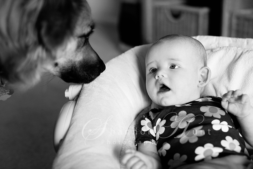 baby and dog by Temple TX photographer