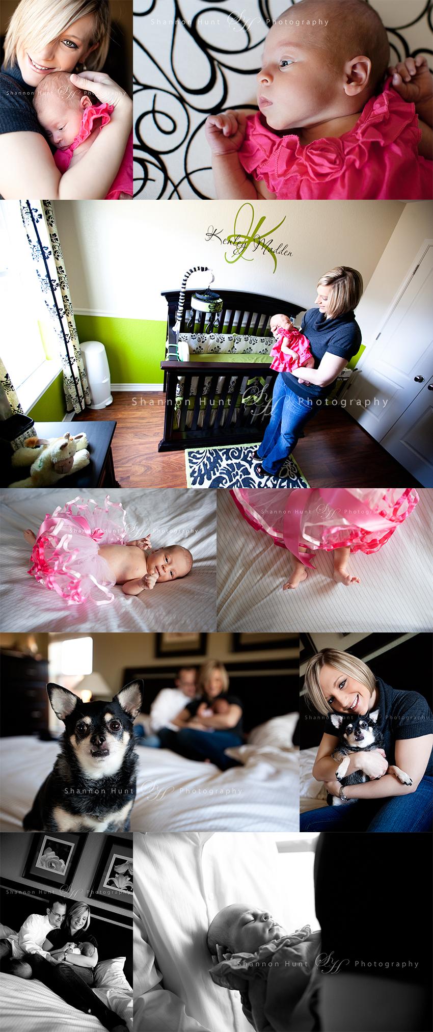 newborn photographers Harker Heights Texas Belton TX Salado Temple Waco